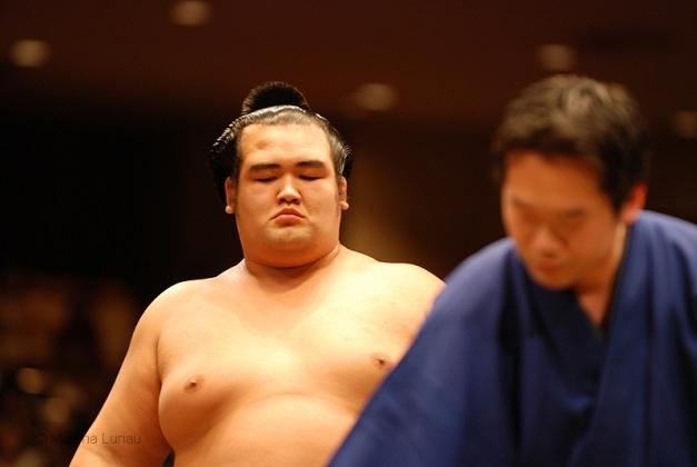 Kotoshogiku perderá su condición de Ozeki para el próximo Haru Basho (Foto: Martina Lunau)